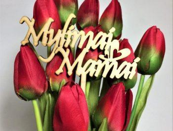 Su Motinos diena!